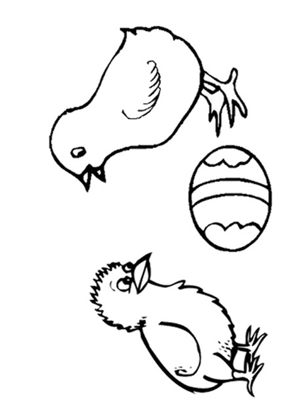 Baby Chick Printable Coloring Pages