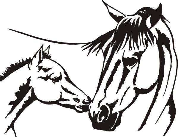 horses head clipart best