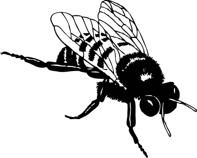 pics of animated bees clipart best free bee clipart download free bee clip art images