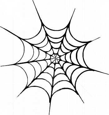 Spider Web Designs Clipart Best