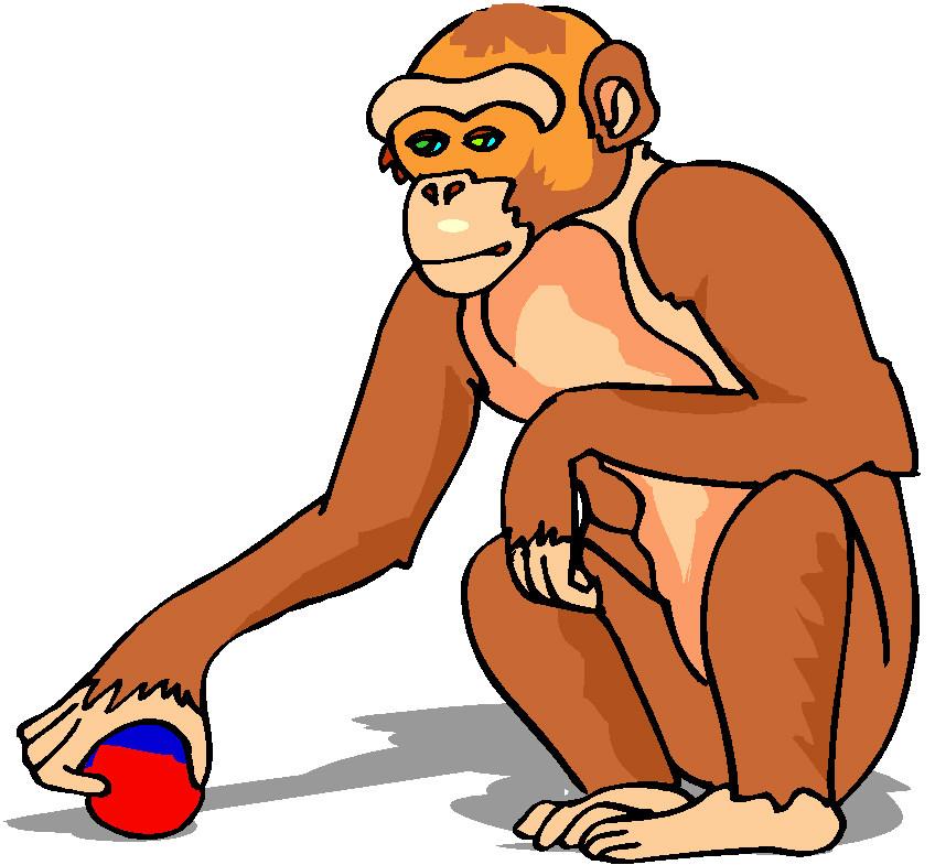 Clip Art - Clip art monkeys 989744 - ClipArt Best - ClipArt Best
