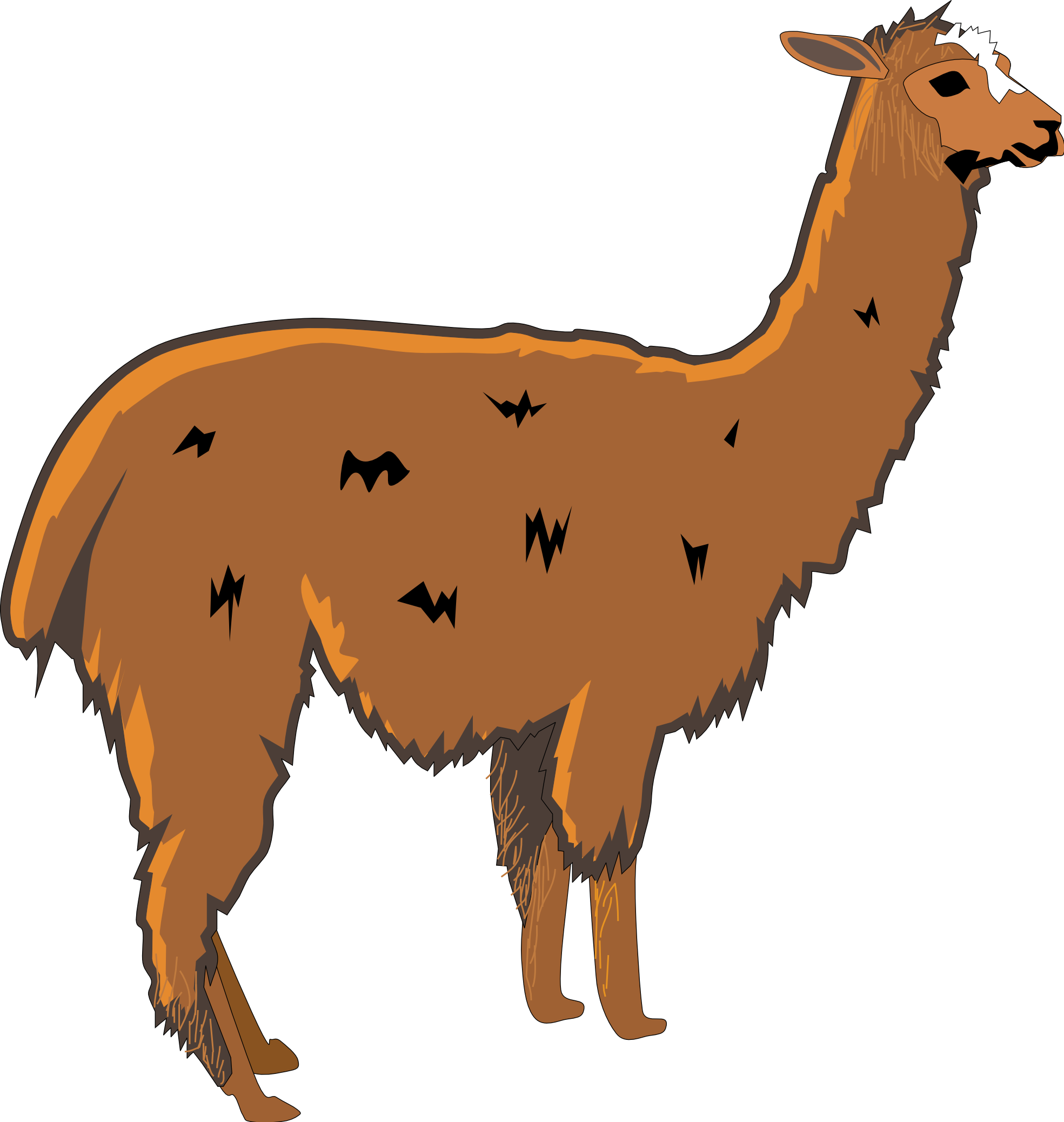 Clip Art Alpaca Clip Art alpaca clip art clipart best free images