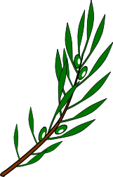 Olive branch drawing.svg