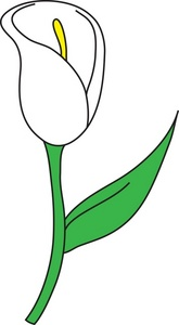 Clip Art Easter Lily Clipart easter lilies clip art clipart best lily image illustration of a white on a
