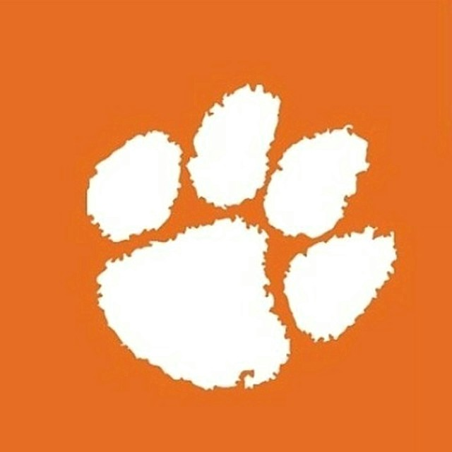 Orange Clemson Canopy Tent Wall for Logo Brand Tailgate Tent