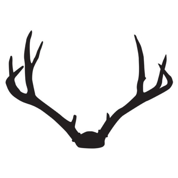 Deer Antlers Wall Decal « Second Language – A boutique NYC ...