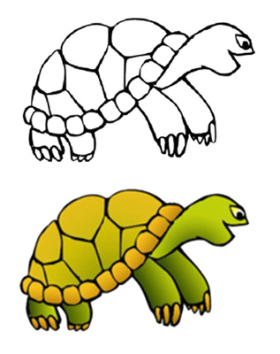 Turtle Shell Pictures - ClipArt Best