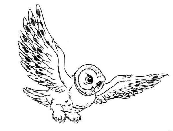 Snowy Owl Clip Art - ClipArt Best - ClipArt Best