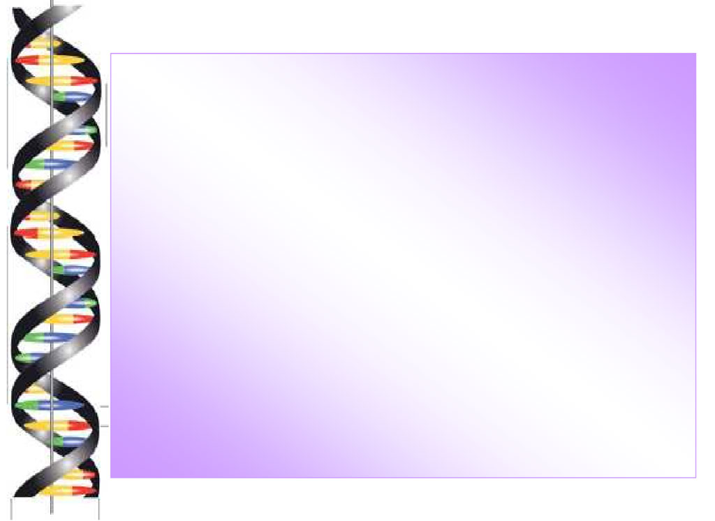 Background Power Point - ClipArt - 51.6KB