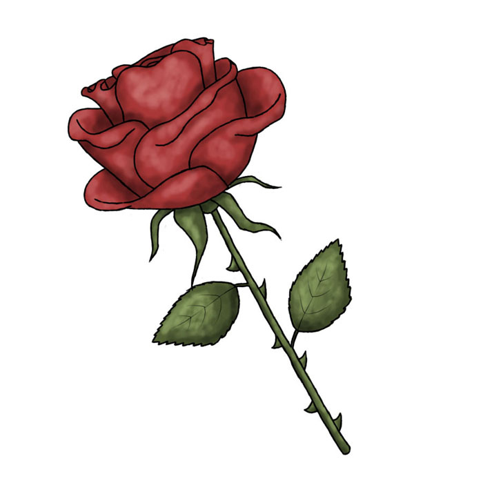 Red Rose Drawings Clipart Best