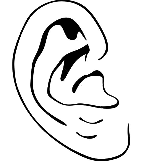 coloring pages of ears - photo#21
