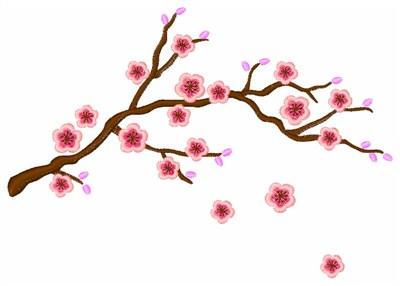 Cherry Blossom Design Clipart Best