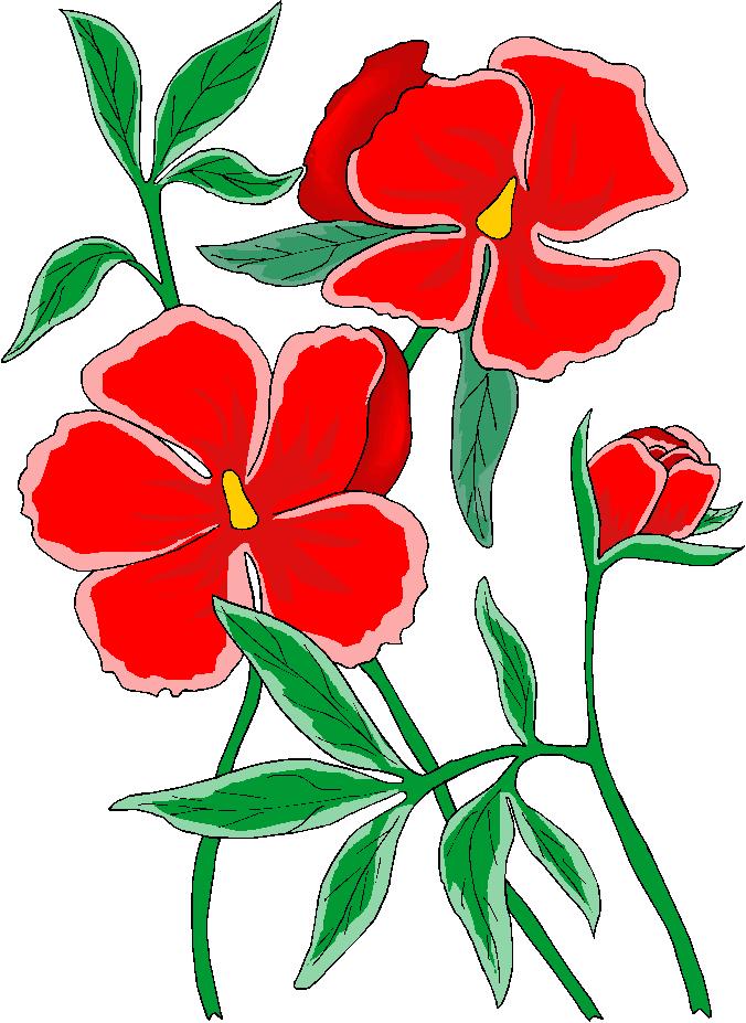 clip art flowers microsoft - photo #4