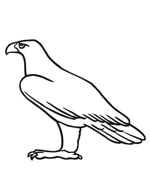 flying bird coloring pages - photo#36