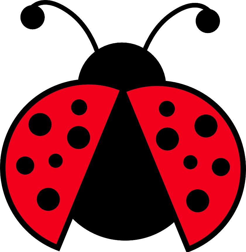 free cartoon ladybug clipart - photo #28