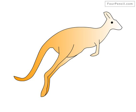 how to draw a baby kangaroo step by step easy