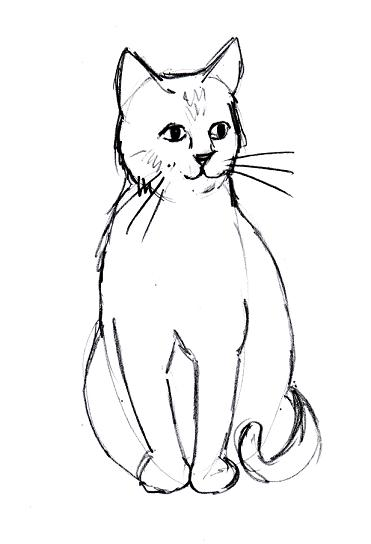 Line Drawing Kitten : Simple cat drawings clipart best