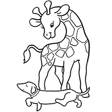 Baby giraffe coloring sheets clipart best for Coloring pages of baby giraffes