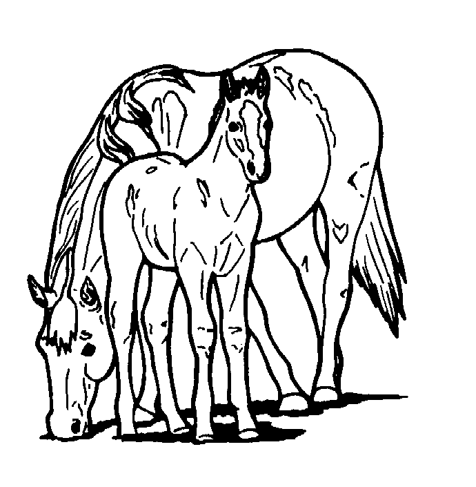 horse head coloring pages printable - photo#29