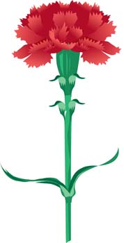 Carnation Clip Art - ClipArt Best