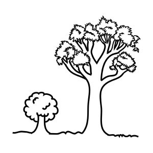 oak tree coloring pages - oak tree coloring page related pictures free dairy foods