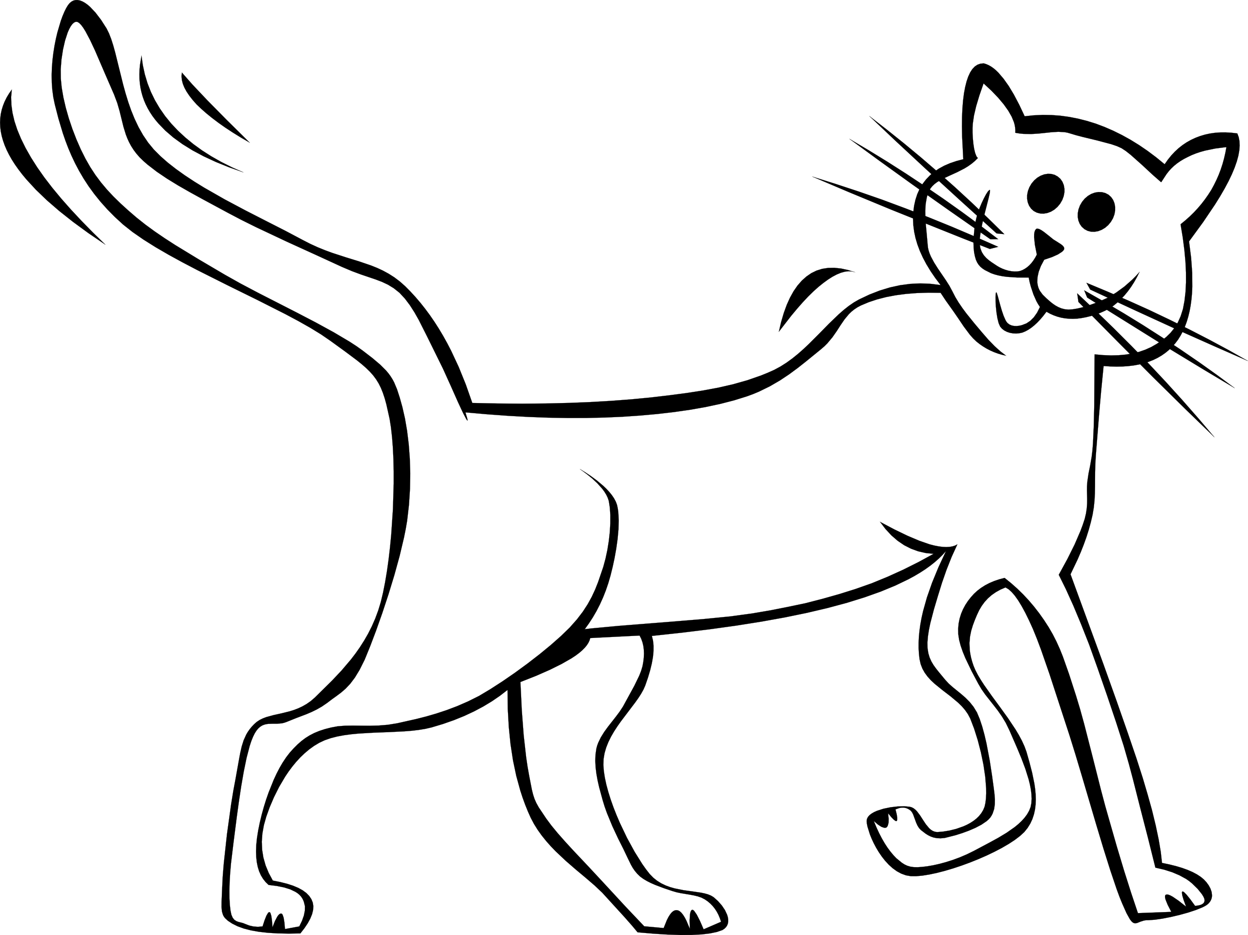 Line Drawing Kitten : Cat line drawings clipart best