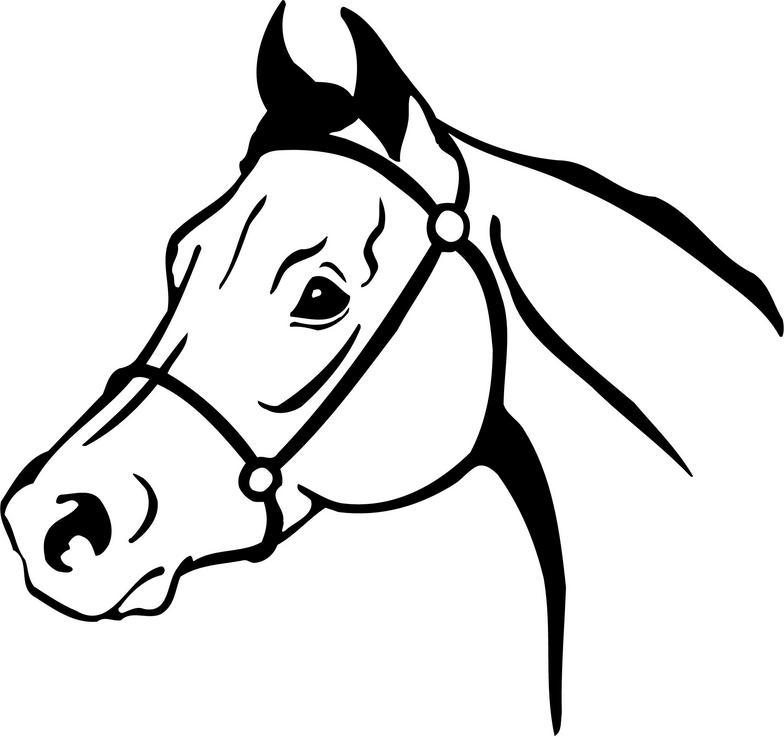 horse face clipart clipart best