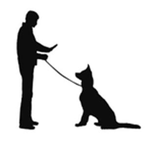 Obey Dog Collar