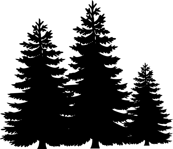 Pine Tree Illustration Png - ClipArt Best
