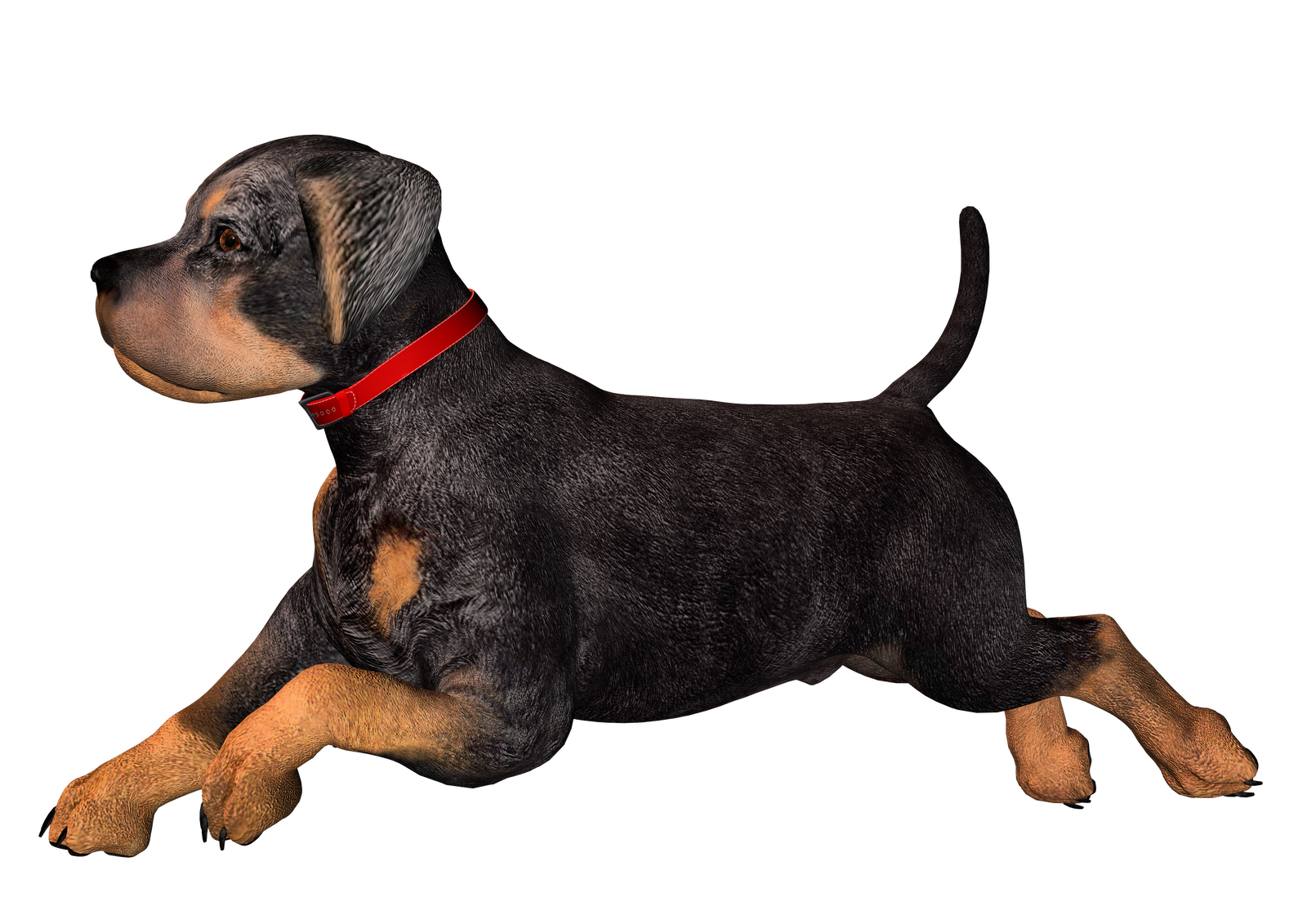 Dog Png Images - ClipArt Best