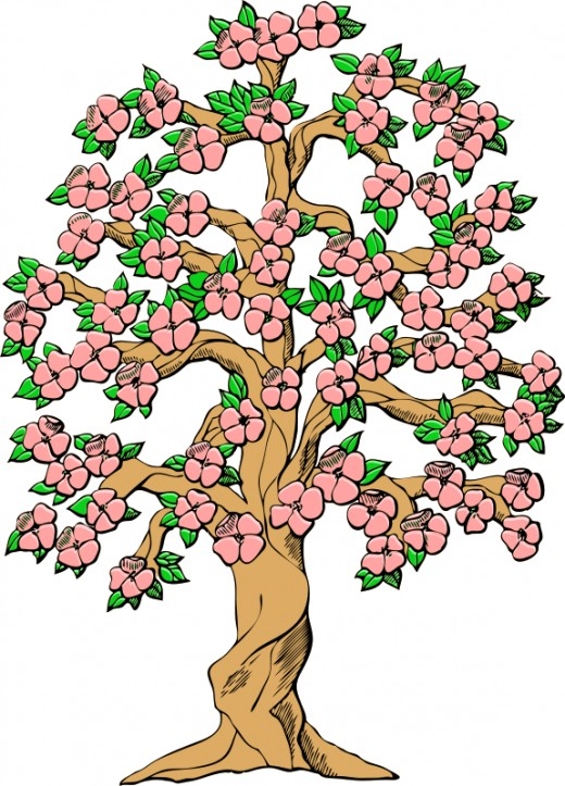 Cherry Tree Cartoon - ClipArt Best