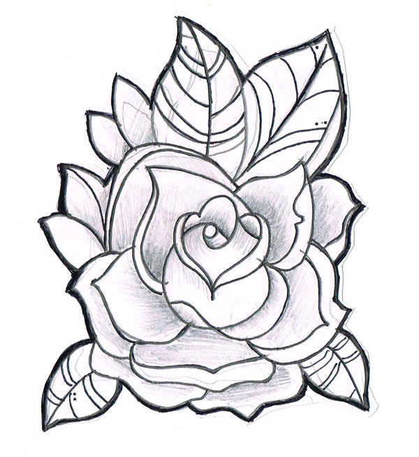 cool rose designs to draw clipart best