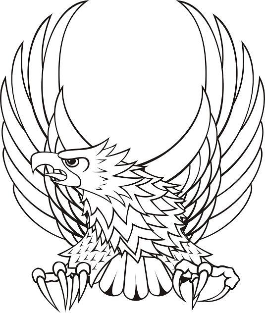 free polish eagle clip art - photo #25