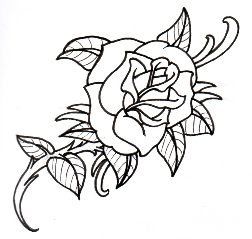 Rose Outline Drawings Clipart - Free to use Clip Art Resource