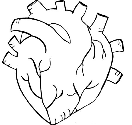 how to draw human heart easily