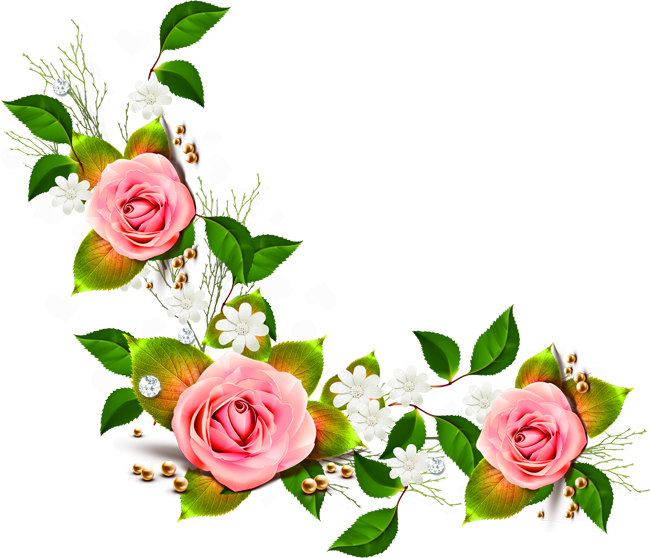 Flowers Png Transparent Transparent Png Cliparts