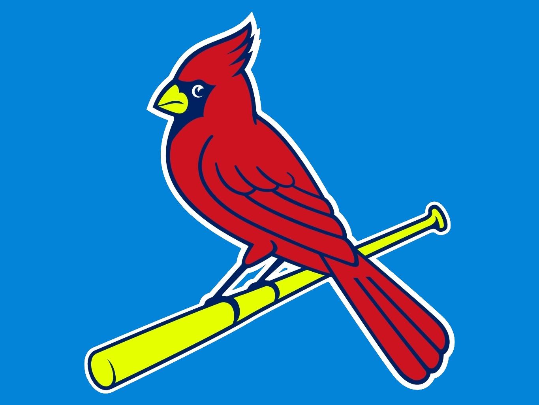 Cardinal Bird - > - Northern Cardinal - Free Transparent PNG Clipart Images  Download