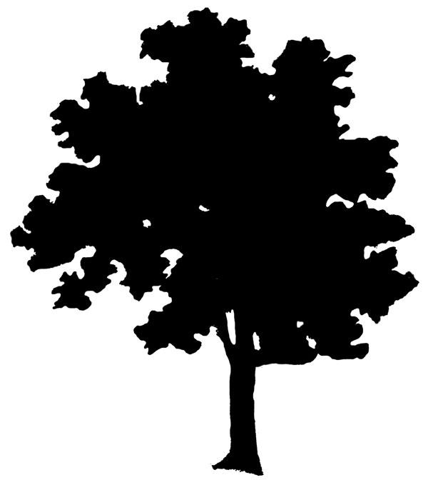 FREE OAK TREE SILHOUETTE CLIP ART - ClipArt Best