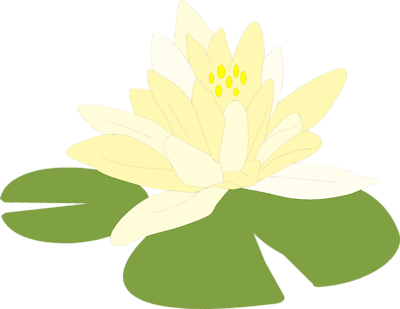 ... Of A Flower On A Lily Pad ... - ClipArt Best - ClipArt Best
