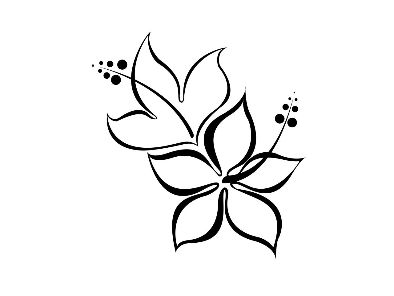 simple flower drawings in black and whiteFree designs Hibiscus ...