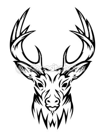 Deer Skull Drawings on deer head tattoo