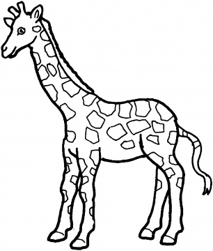 Giraffes Coloring Pages. Heads Of Giraffes Superb Drawing To ...