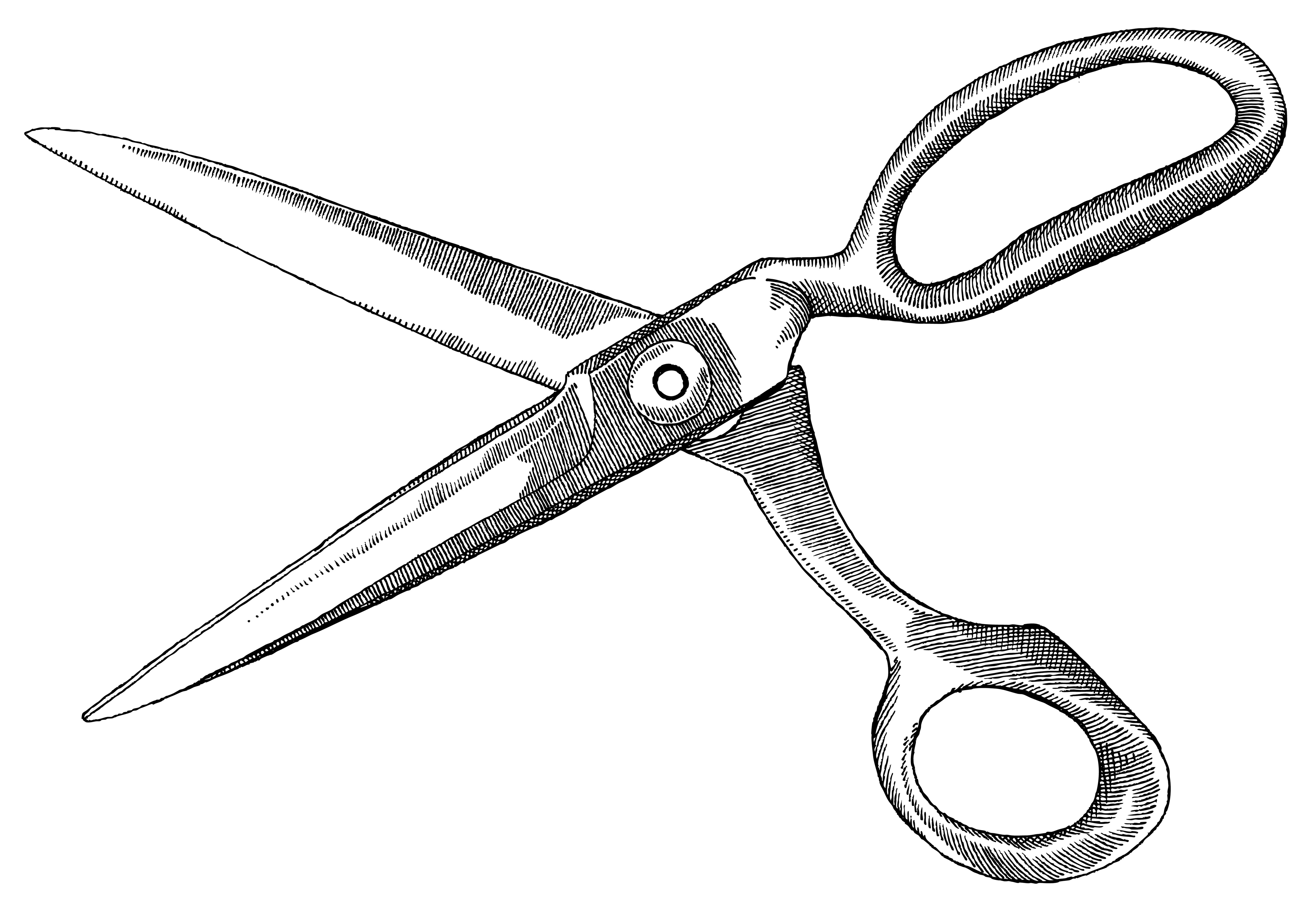 clip art dotted line with scissors - photo #40