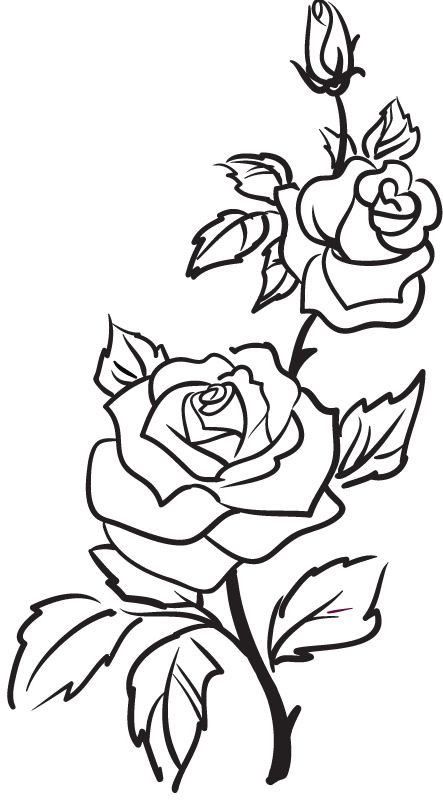 Rose Outline | Tattoos, Rose ...