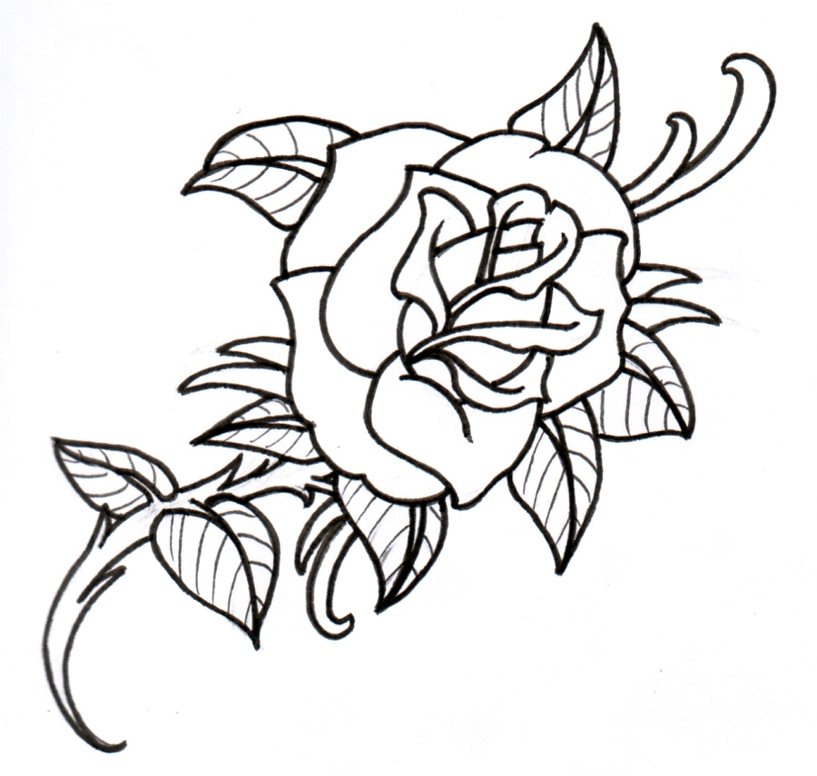 Black And White Rose Drawing