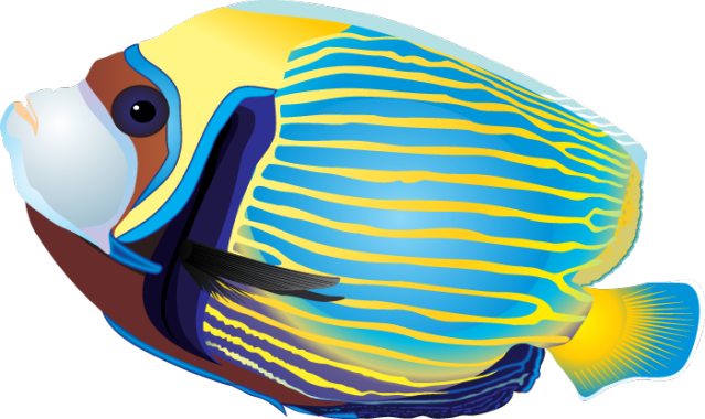 free clipart tropical fish - photo #3