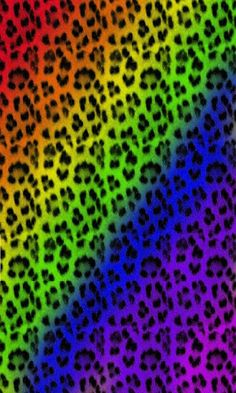 Colorful Zebra Print Wallpaper - ClipArt Best