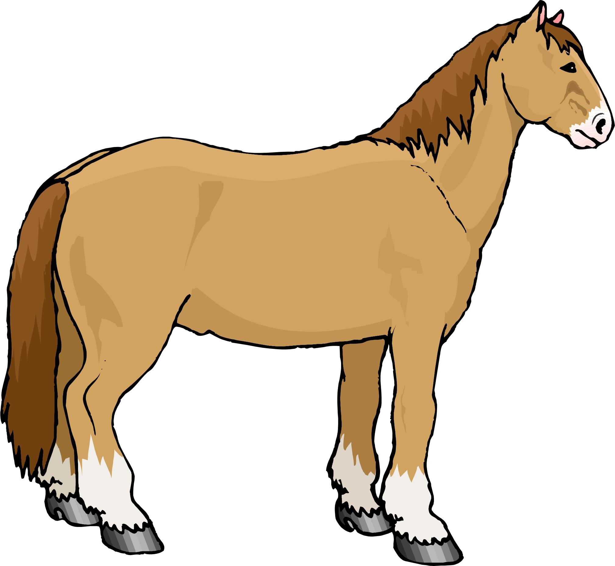 Horse Cartoon Cartoon Horse -...