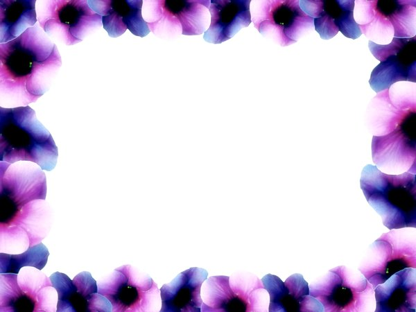 Flower Page Borders - ClipArt Best