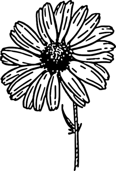 clipart flowers black and white